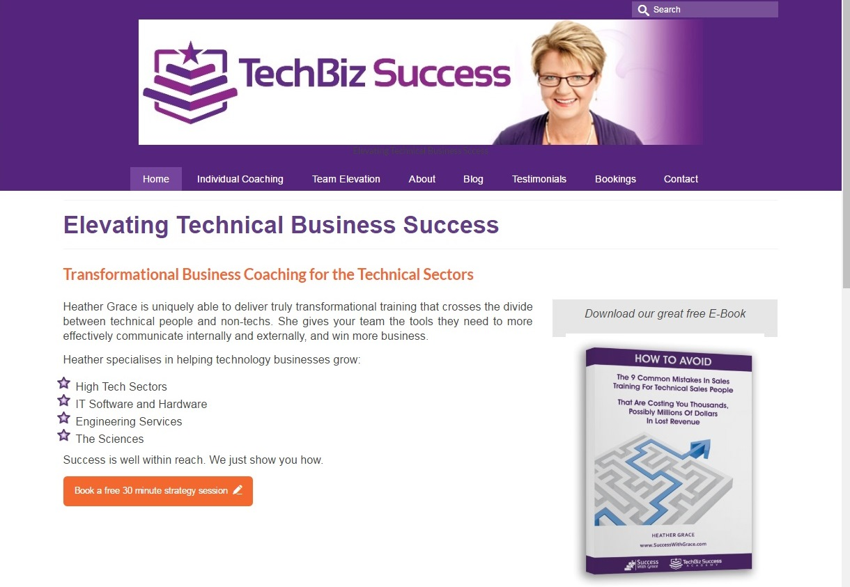 TechBiz Success